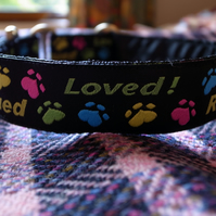 "Custom 1 Inch Wide Loved and Rescued House or Single Loop Collar-OVER 18""COLLAR"