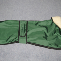 Custom Sherpa Lined Bottle Green Whippet Puppy and Whippet Waterproof Coat
