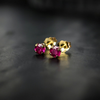 Solid Gold Ruby Earrings