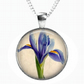 IRIS - Glass Picture Pendant on Chain - Silver Plated