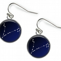 PISCES Constellation Zodiac - Glass Picture Earrings - Silver Plated