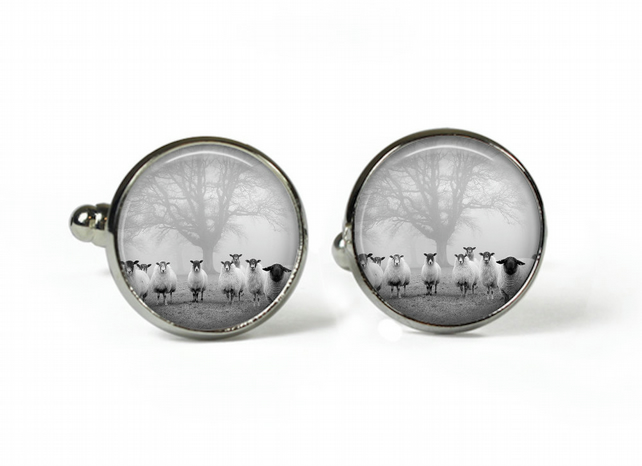 FLOCK of SHEEP - Glass Picture Cufflinks - Silver Plated