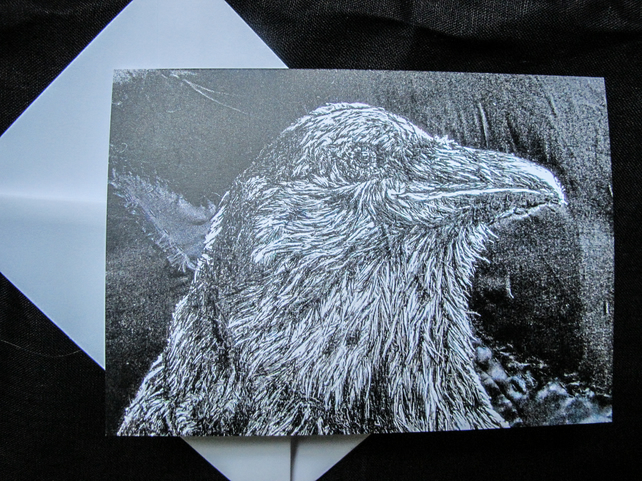 Crow blank greeting card