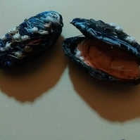 Mussels Artwork