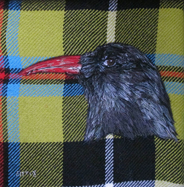 Chough Artwork