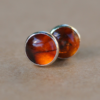 Amber stud earrings, 6 mm sterling silver studs, orange jewellery gift idea