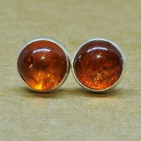 Amber earrings, Amber jewelry in sterling silver,  5 mm