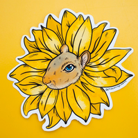 Sunflower Squirrel Vinyl Sticker Decal for laptops, notebooks, phonecases