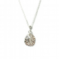 Pure Silver Limpet Shell Necklace on Sterling Silver Chain