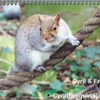 Calendar 2019 Cyril and Friends Wildlife.