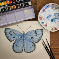 An original watercolour of a large blue butterfly, double mounted.