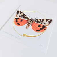 Illuminated Jersey Tiger Moth giclee print with gold leaf.