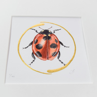 Illuminated giclee print of a ladybird with real gold.