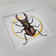 Stag beetle original illuminated painting.