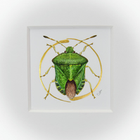 Original painting of a shield bug with gold leaf.