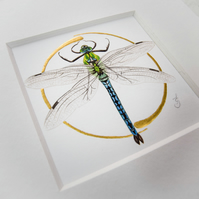 Original Emperor Dragonfly Illuminated Painting.