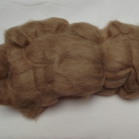 Baby Camel Top - 50gms approx.