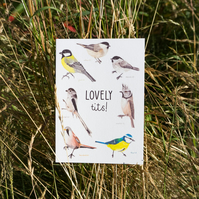 Lovely Tits Greetings Card Valentines Day or Anniversary Card