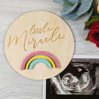 Rainbow Baby Milestone prop, Rainbow baby disc, newborn photo prop