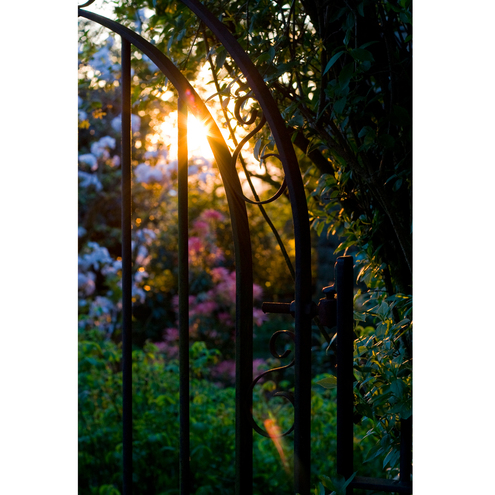 Sunlight Through The Garden Gate Photographic Print