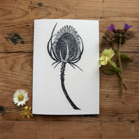 Black and White Teasel, greeting card from an original linocut by Sarah Robinson