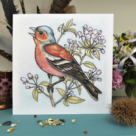 Chaffinch greeting card, garden birds