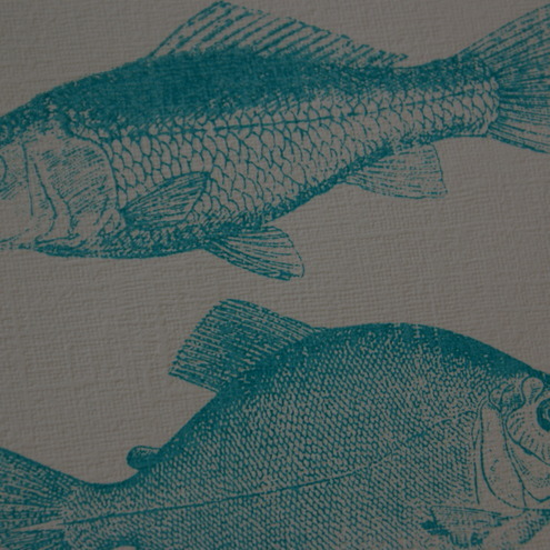 Screen printed fish poster