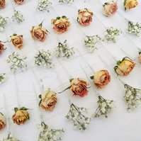 Dried flower hair pins - Gypsophila & Antique Pink Roses - wedding