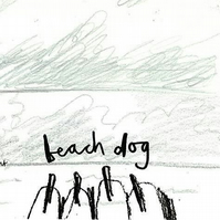 Beach Dog: book illustrated short story