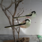 Long Tailed Tit No1 - Garden Bird - Fused Glass Hanging - Sun Catcher