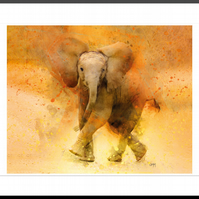 Stompy the Elephant LARGE Framed Wall Art Animal Wildlife Gift Home Decor Living