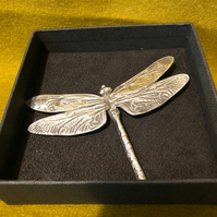 Large Lady Crow Pewter Dragonfly Brooch in Presentation Box
