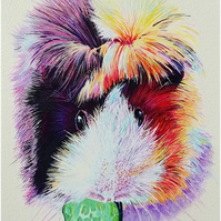 Custom, colourful contemporary pet portrait - dogs, cats, small furries