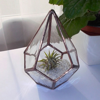Stained Glass Air Plant Terrarium Kit, Air Plant Terrarium Kit - MADE TO ORDER