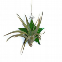 Stained Glass Star Air Plant Holder, Green Stained Glass Plant Holder
