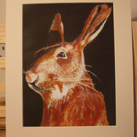 Larkley Hare Single mounted print to fit frame 10 x 8