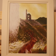Double mounted print Cornwall Hare to fit 10 x 8 frame