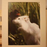 Mouse and bumble bee double mounted print to fit frame 10 x 8