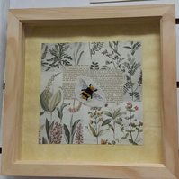 Bee embroidered on botanical print in box frame. Bumble bee, Flowers & text.