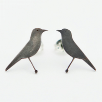 Bluethroat Oxidised Silver Stud Earrings