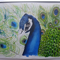 Indian Blue ORIGINAL Mixed Media Watercolor Peacock Illustration Painting
