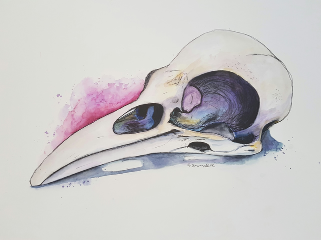 ORIGINAL Raven Skull Watercolor and Fineliner Skull Illustration Painting