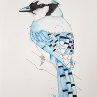 ORIGINAL 'Blue Jay' Watercolor Wildlife Bird Illustration Painting