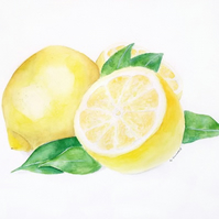 Limited Edition A4 Giclee Art Print Lemons & Leaves Watercolour Illustration
