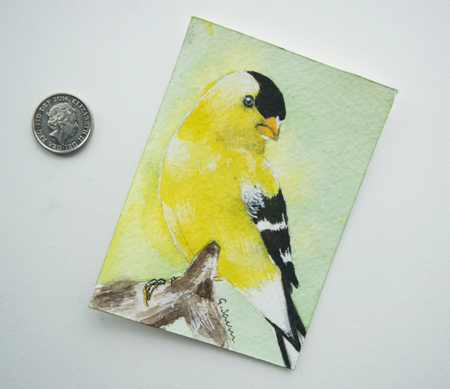 ORIGINAL ACEO No. 11 'Goldfinch' Mixed Media Watercolor and Charcoal Painting
