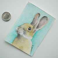 Limited Edition Mounted ACEO Giclee Print 'Baby Bunny' Watercolor Artwork