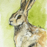 ORIGINAL ACEO No. 2 'Wild Hare' Mixed Media Watercolor and Charcoal Painting