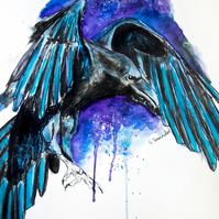 Limited Edition A4 Art Print 'Raven Night' Bird Illustration Painting