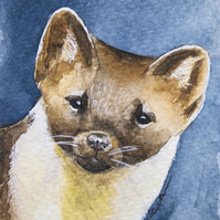 ORIGINAL ACEO No. 16 'Pine Marten' Mixed Media Watercolor and Charcoal Painting