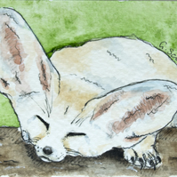 ORIGINAL ACEO No.25 'Sweet Fennec Fox' Wildlife Watercolor & Charcoal Painting